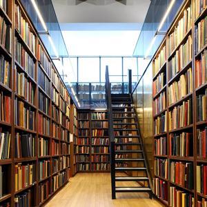 Библиотеки Милославского